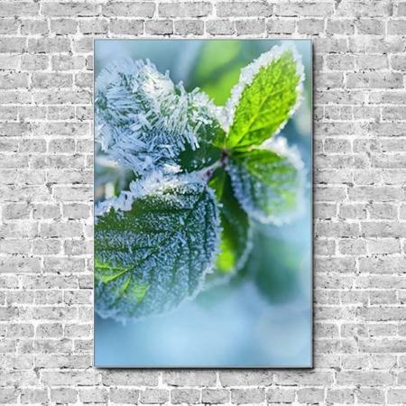 Stoffklang Akustikbild Hochformat Wand Blatt mit Frost