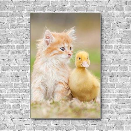 Stoffklang Akustikbild Hochformat Wand Katzenbaby Kätzchen Entenküken