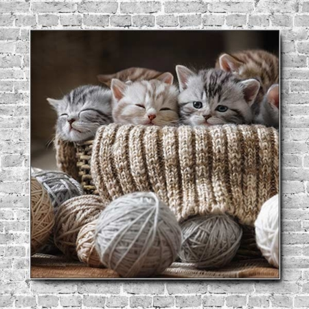 Akustikbild Kätzchen und Wolle Quadrat