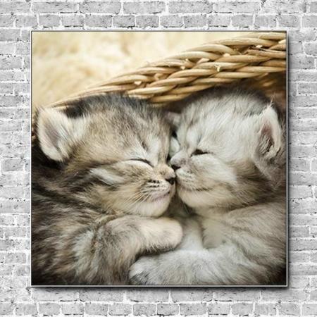 Stoffklang Akustikbild Quadrat Wand Katzenbabys schmusen Körbchen