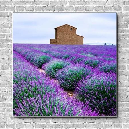 Stoffklang Akustikbild Quadrat Wand Lavendel Haus