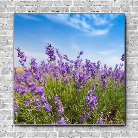 Stoffklang Akustikbild Quadrat Wand Lavendel blauer Himmel