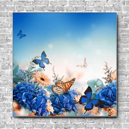 Akustikbild Schmetterling auf Hortensie Quadrat