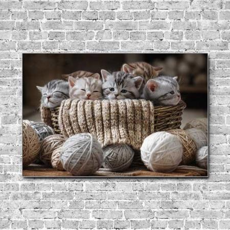Akustikbild Kätzchen und Wolle Querformat