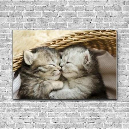 Akustikbild Kätzchen schmusen im Körbchen Querformat
