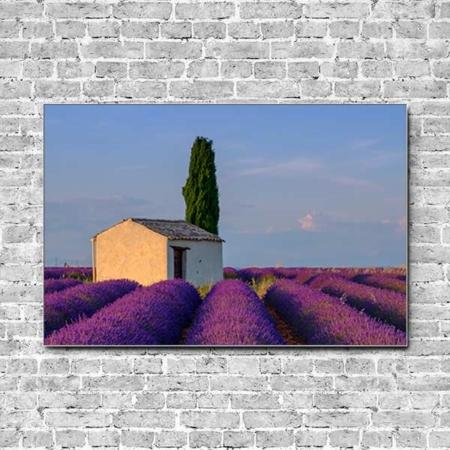 Akustikbild Häuschen im Lavendelfeld Querformat