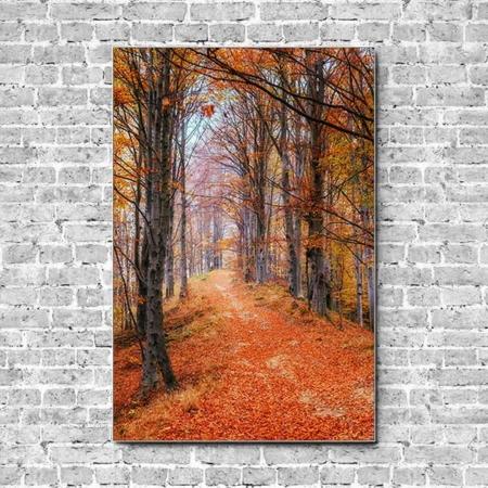 Akustikbild herbstlicher Waldweg Hochformat