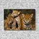 Akustikbild Tierbabys Leoparden Hochformat