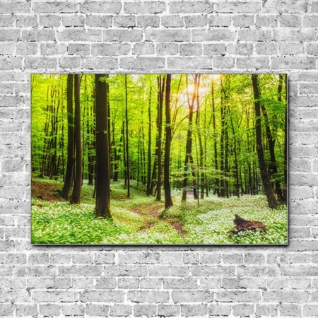 Stoffklang Akustikbild Querformat Wand Waldweg grün